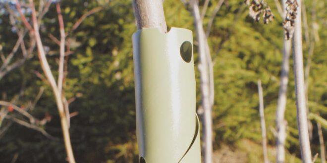 Protectie Spiralata Pentru Pomi